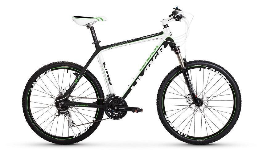 bike_tasso29_big