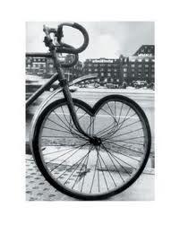 lower, Oława, rower